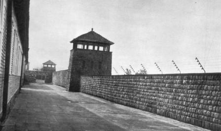 mauthausen1.jpg